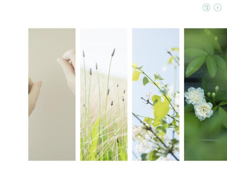 きしもと歯科クリニック | Photo and Letters