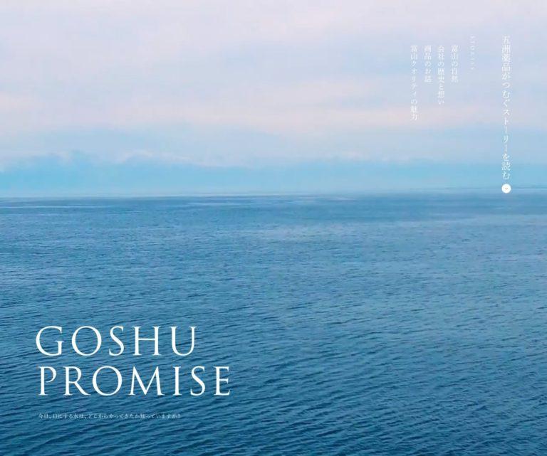 GOSHU PROMISE - 五洲薬品株式会社